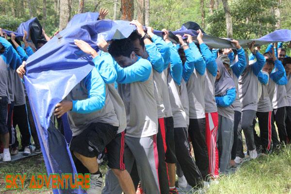 Team Building (40)