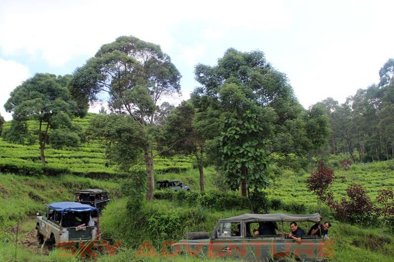 Outbound Bandung, Outbound Lembang, Company Gathering Outbound, Hutan Sukawana, Cikole (4)
