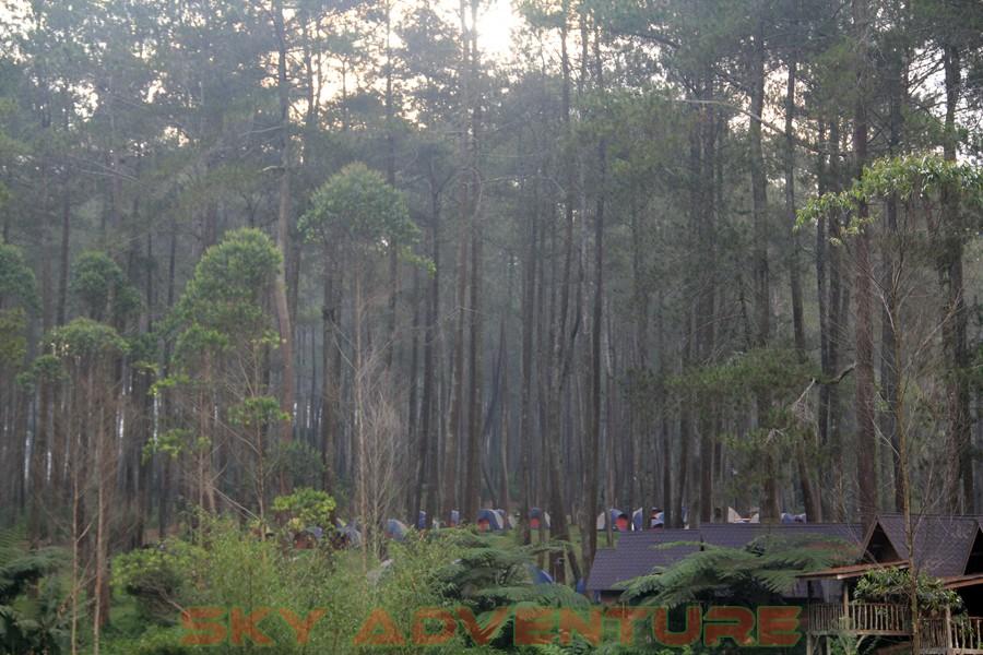 camping cikole lembang bandung | camping cikole | camping ground cikole | camping lembang | camping di cikole lembang | camping di lembang