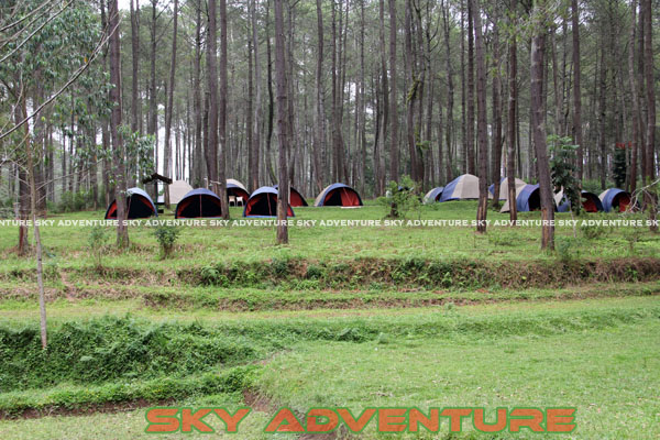 camping ground cikole lembang bandung jawa barat indonesia by Sky Adventure Indonesia (11)