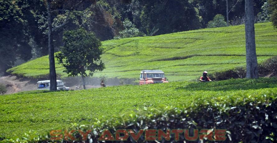wisata alam dengan land rover melalui kebun teh, gambung, gunung tilu, riung gunung, kampung laspada, rahong, situ cileunca, citere (1)