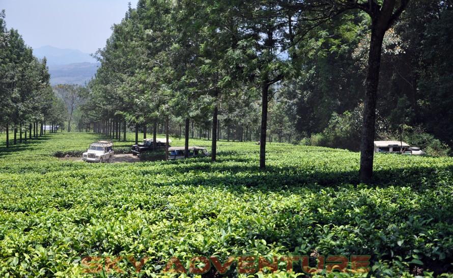 wisata alam dengan land rover melalui kebun teh, gambung, gunung tilu, riung gunung, kampung laspada, rahong, situ cileunca, citere (13)