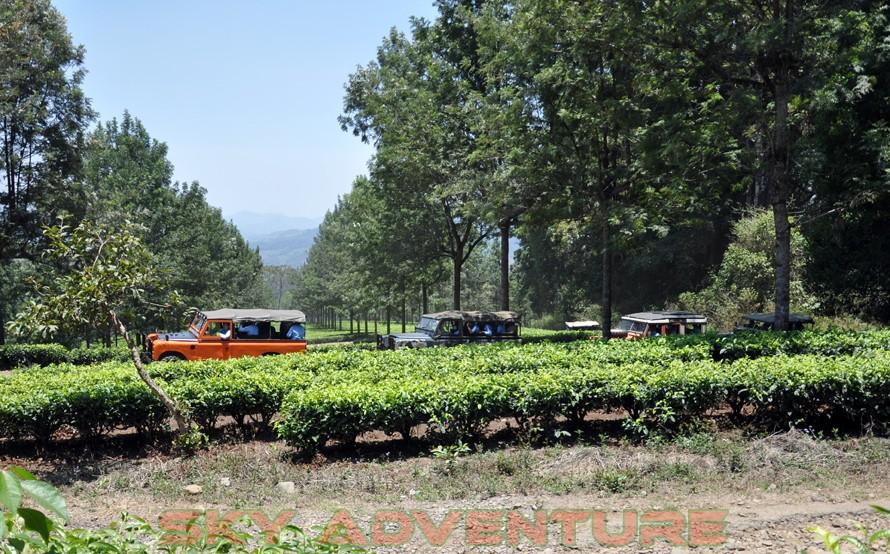 wisata alam dengan land rover melalui kebun teh, gambung, gunung tilu, riung gunung, kampung laspada, rahong, situ cileunca, citere (14)