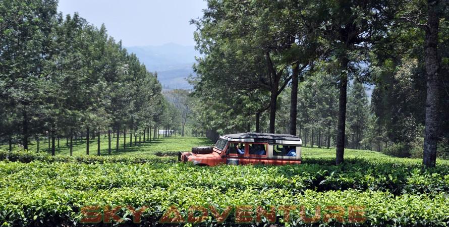 wisata alam dengan land rover melalui kebun teh, gambung, gunung tilu, riung gunung, kampung laspada, rahong, situ cileunca, citere (16)