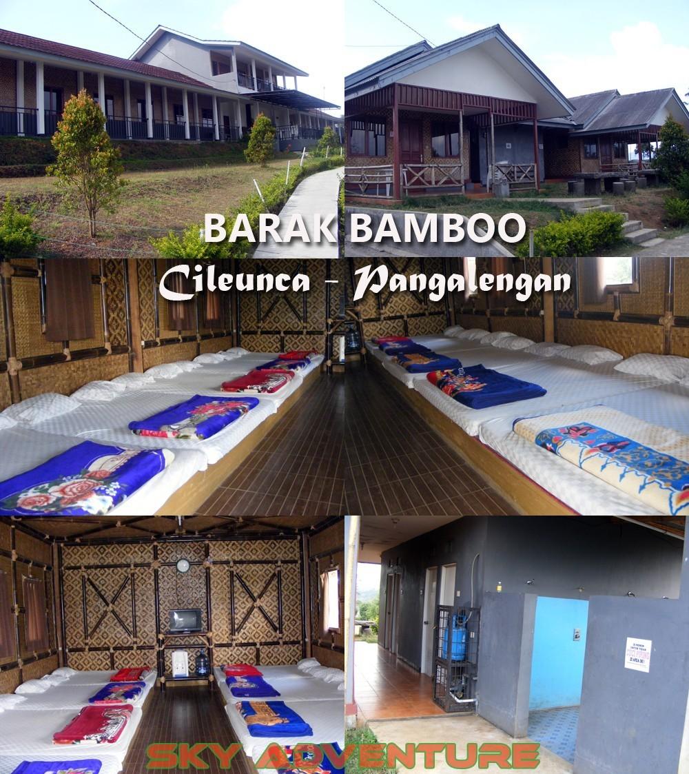 BARAK Bamboo