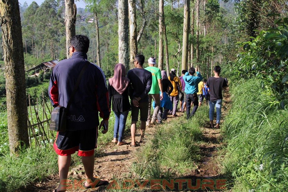Outbound -Rafting -Fun Game -Hikking -Tea Walk -Menginap di tepi danau Situ Cileunca-BCA Finance Tasikmalaya Jawa Barat, Indonesia (61)